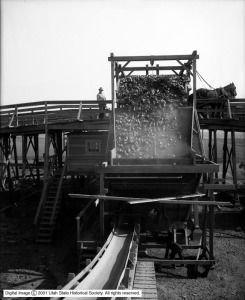 Layton_Sugar_Factory_Wagon_Dumping_Beets_into_Hopper